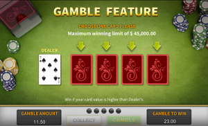 Upgraded slot game feature gamble feature screenshot