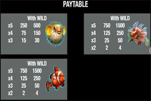 MAXBET wild dolphins paytable